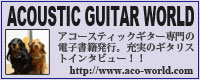 Acoustic Guitar World