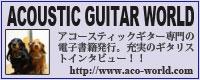Acoustic Guitar World
